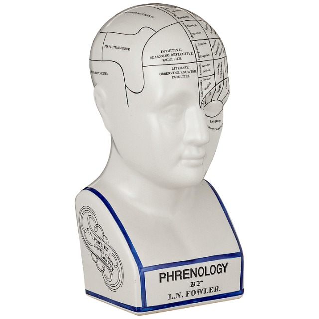 Phrenology bust John Lewis