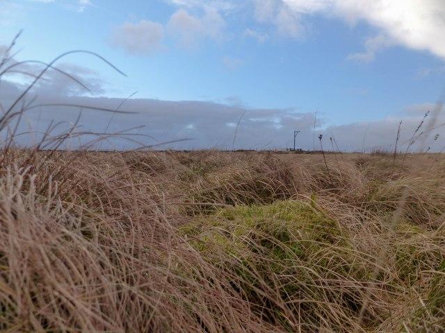 Winter's Gibbet on the distant horizon